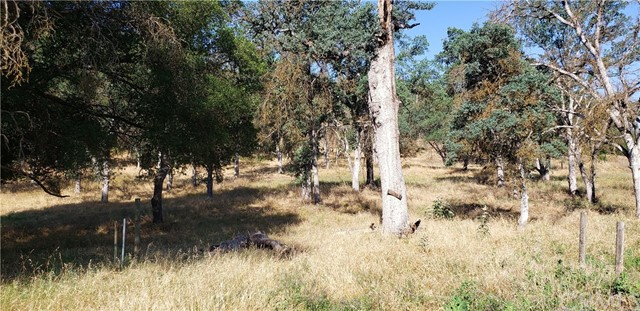 0 Dunlap Road, Squaw Valley, CA 93646