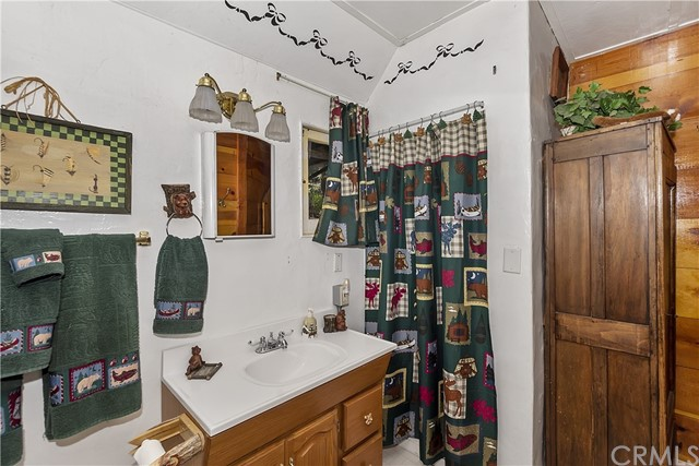 33785 Cedar Pines Ln, Green Valley Lake, CA 92341 Photo 12