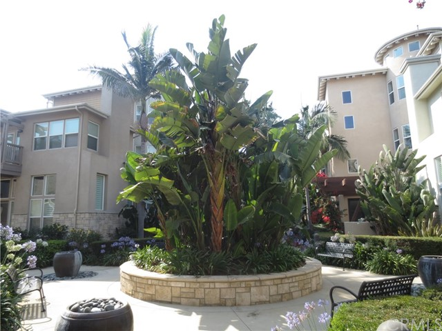 6020 Celedon Creek, Playa Vista, CA 90094 Photo 2