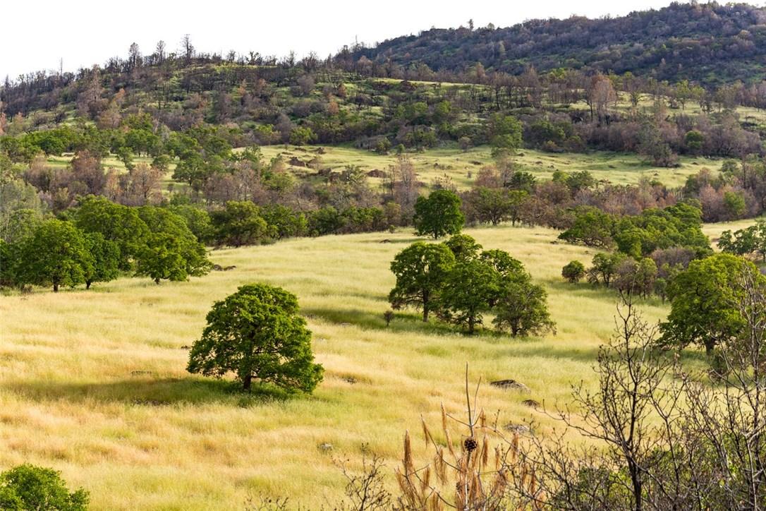0 Wild Turkey Lane, Mariposa, CA 95338