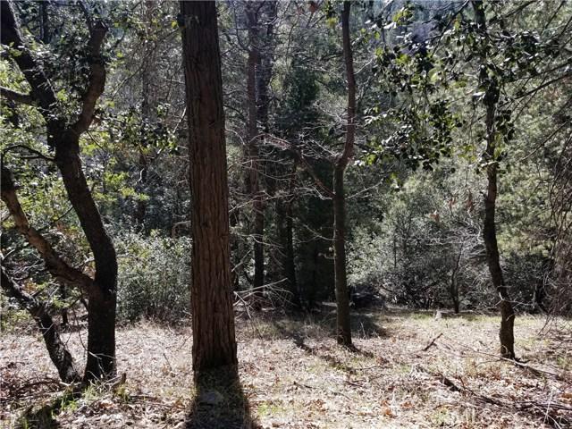 170 Fern Hill Road, Cedarpines Park, CA 92322