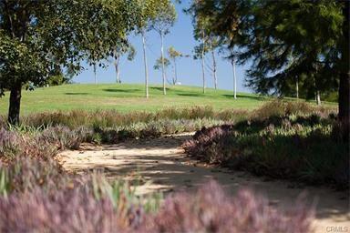 207 Wild Lilac, Irvine, CA 92620 Photo 41
