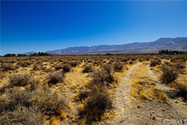 0 Akron, Lucerne Valley, CA  Photo 5