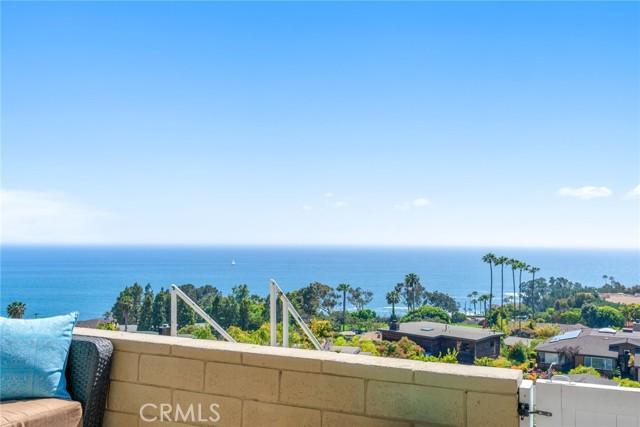 19. 21692 Ocean Vista Drive #C Laguna Beach, CA 92651