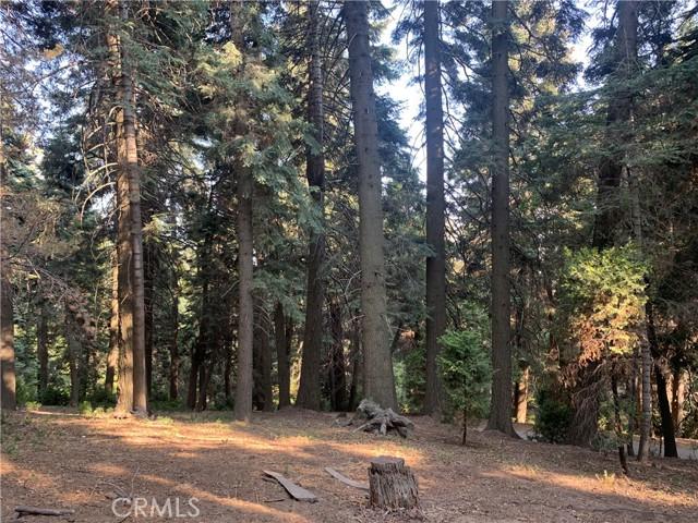 885 Quail Trail, Lake Arrowhead CA: https://media.crmls.org/medias/2146c518-1530-4441-ad0b-17b6764d0844.jpg