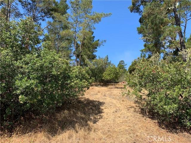 0 Green St, Cambria, CA 93428 Photo 4