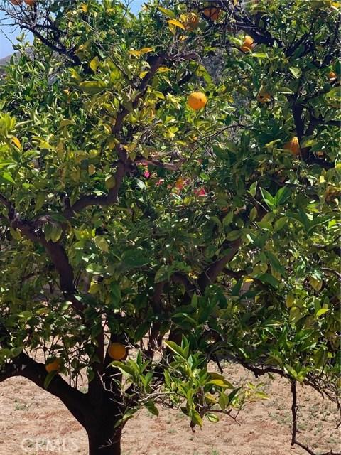 Image 17 of 29614 Spotted Bull Ln, San Juan Capistrano, CA 92675