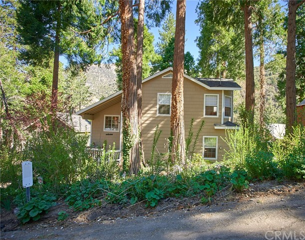 41134 Pine Drive, Forest Falls, CA 92339