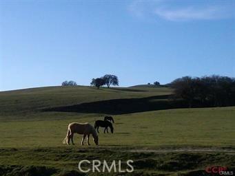 3470 Ranchita Cyn Rd, San Miguel, CA 93451 Photo 11