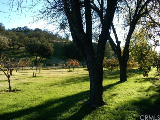 3470 Ranchita Cyn Rd, San Miguel, CA 93451 Photo 21