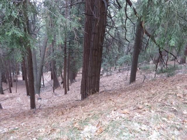 0 Mozumdar Road, Cedarpines Park, CA 92322