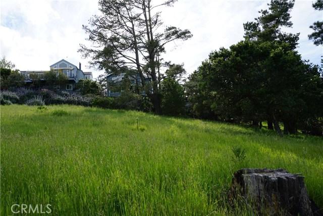 0 Pineridge Dr, Cambria, CA 93428 Photo 7