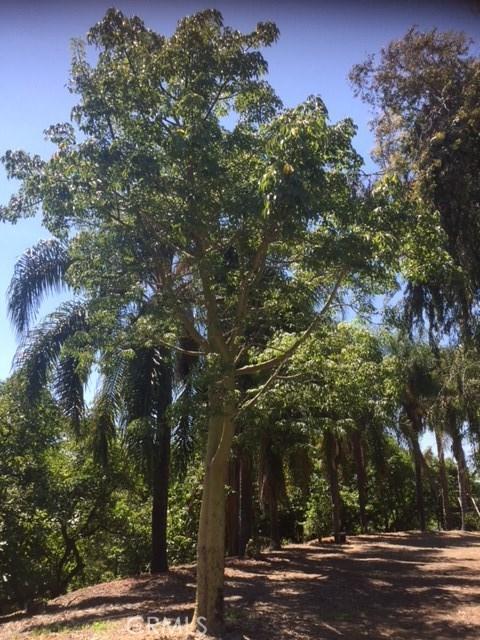 0 Dorita Pablo Rd, Temecula, CA 92590 Photo 52