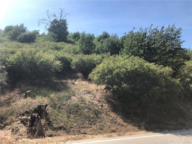 15 Hook Creek Road, Cedar Glen, CA 92321