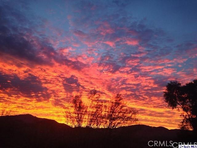 12017 Mountain View Trail, Kagel Canyon, CA 91342 Photo 3