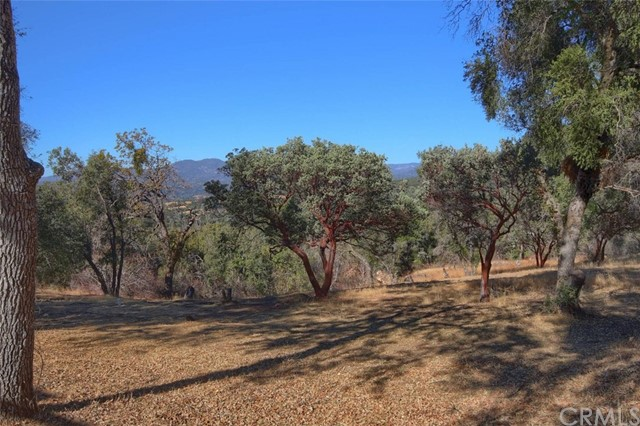 31188 Tera Tera Ranch Rd, North Fork, CA 93643 Photo 53