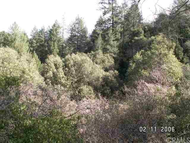 14 star crest Lane, Berry Creek, CA 95916
