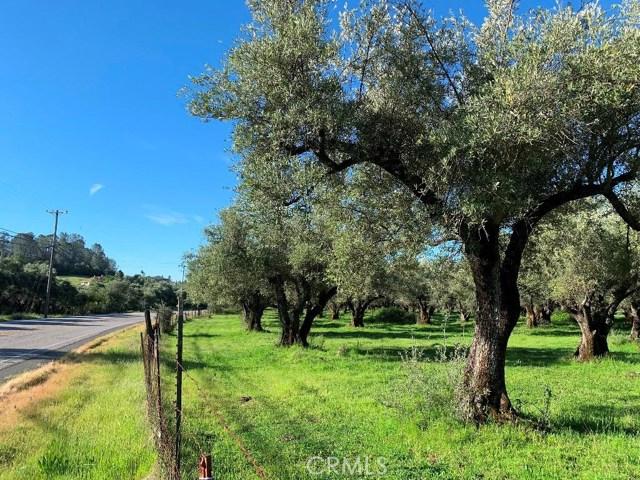 0 Mt Ida Road, Oroville, CA 95966