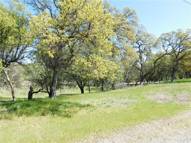 21352 Creekside Drive, Red Bluff, CA 96080
