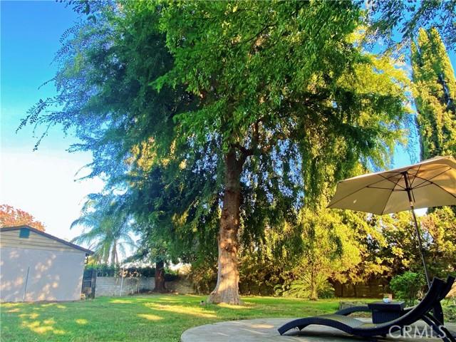 31. 354 W Lemon Avenue Arcadia, CA 91007