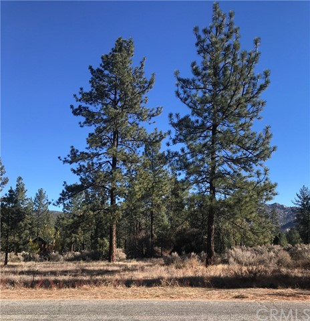0 Devils Ladder Road, Mountain Center, CA 92561