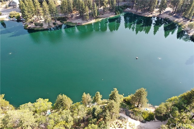33095 Maple Ln, Green Valley Lake, CA 92341 Photo 45
