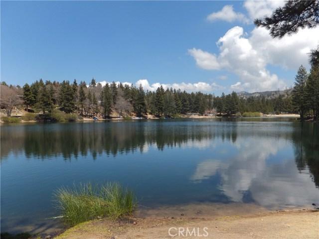 670 Dahlia Dr, Green Valley Lake, CA 92341 Photo 30