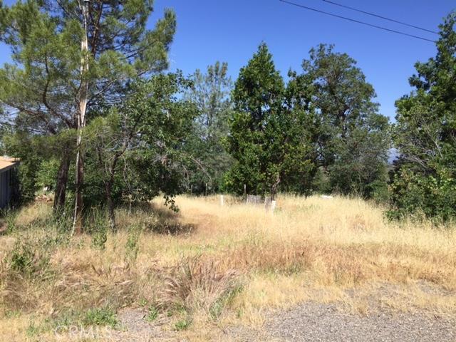 18931 Piney Lane, Paynes Creek, CA 96075
