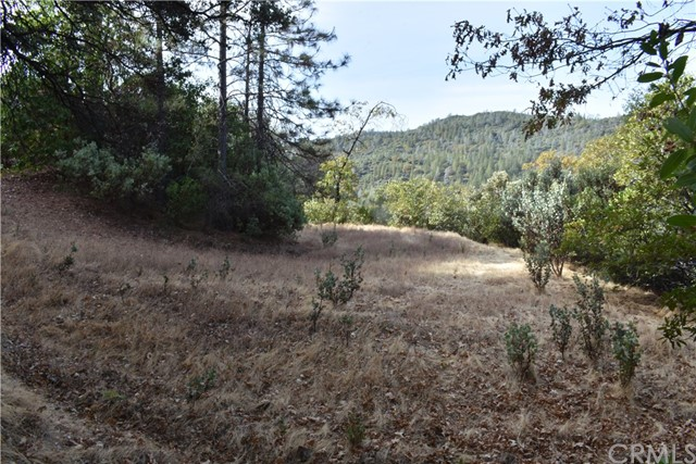 0 Oro Quincy, Berry Creek, CA 95916