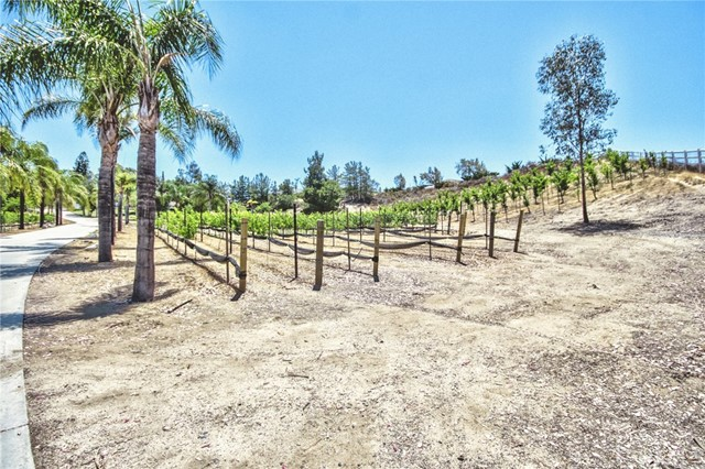 41540 Avenida Rancho, Temecula, CA 92592 Photo 62