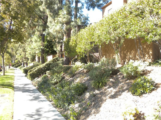 91 Arlington Dr, Pasadena, CA 91105 Photo 2