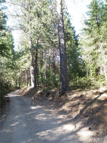 0 Wagon Road, Forest Ranch, CA 95942
