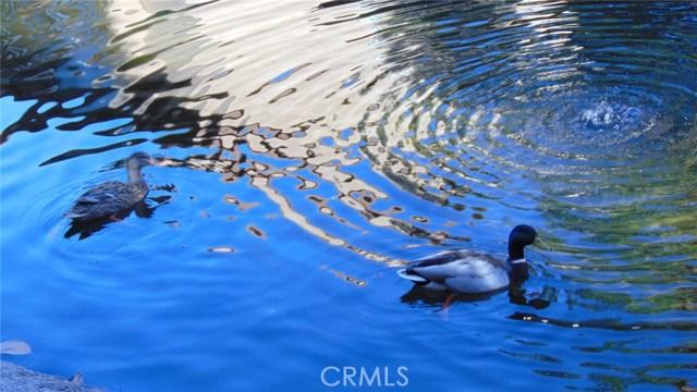 104 Tangelo, Irvine, CA 92618 Photo 0