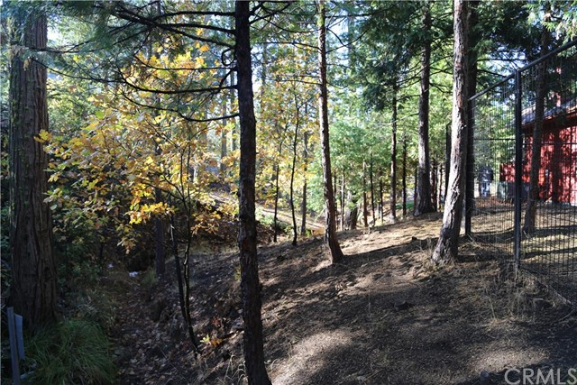 36159 Popi Poyah, North Fork, CA 93643 Photo 8