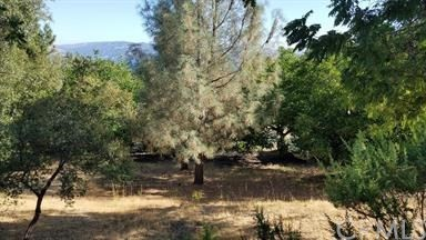 10012 Point Lakeview, Kelseyville, CA 95451
