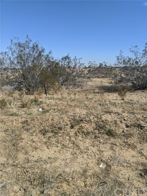 0 Mojave River Road Area, Cedarpines Park, CA 92322