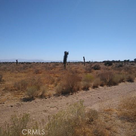 10611 Yucca Terrace Dr, Oak Hills, CA 92344 Photo 6