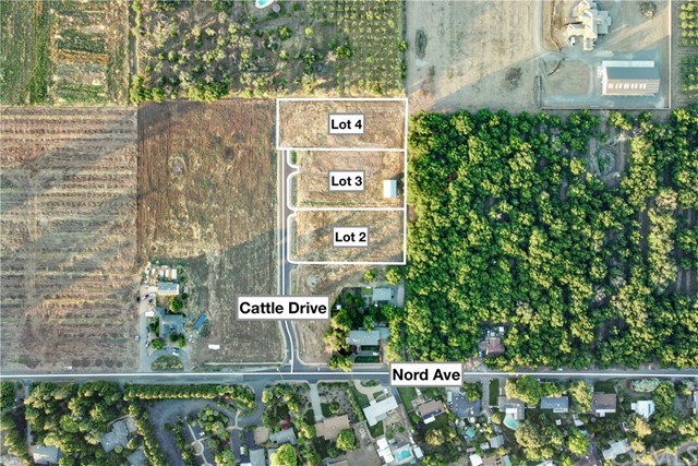 3 Cattle Drive Court, Chico, CA 95972