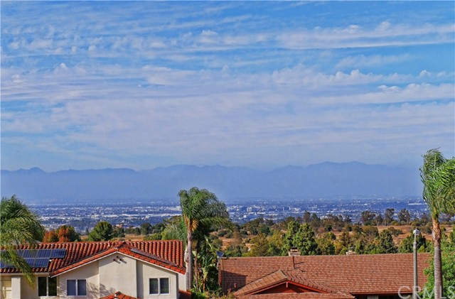 41. 4125 Roessler Court Palos Verdes Peninsula, CA 90274