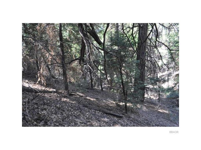 0 Coyote Trail, Cedarpines Park, CA 92322