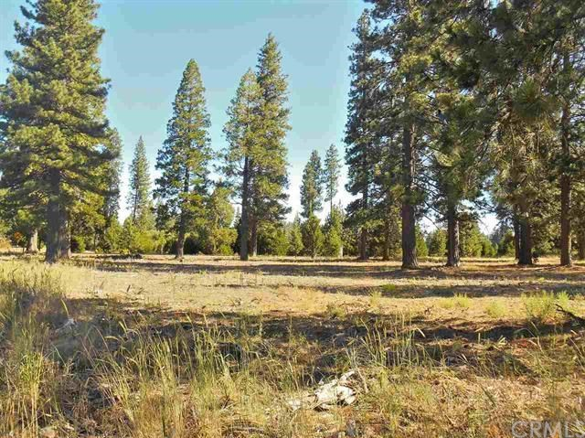 1 Black Butte, Weed, CA 96094