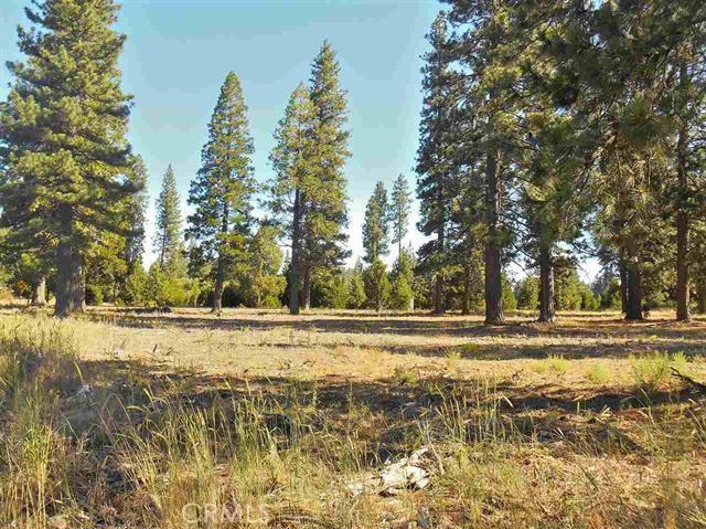 1 Black Butte, Weed, CA 96094