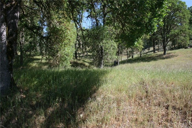 15847 Joseph, Lower Lake, CA 95457 Photo 1