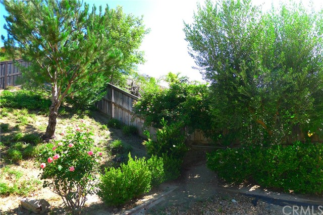 46202 Via La Tranquila, Temecula, CA 92592 Photo 51