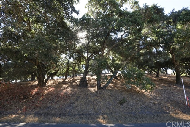 One of Arroyo Grande Homes for Sale at 30  Huasna