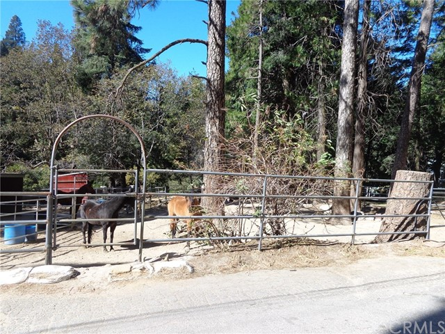 21258 Saw Pit Creek, Cedarpines Park, CA 92322