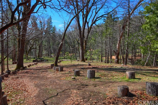 52946 Timberview Rd, North Fork, CA 93643 Photo 51