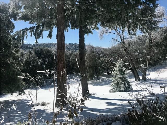 58. 33462 Conifer Rd Palomar Mountain, CA 92060