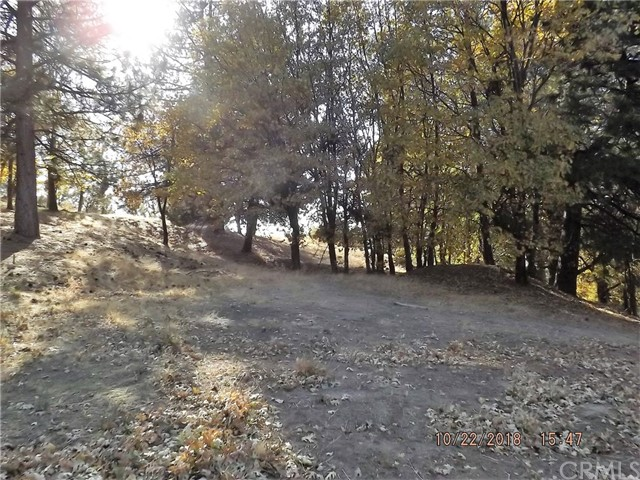 30110 Skyline Drive, Running Springs Area, CA 92382