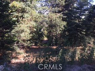 0 Mid Lane, Twin Peaks, CA 92391